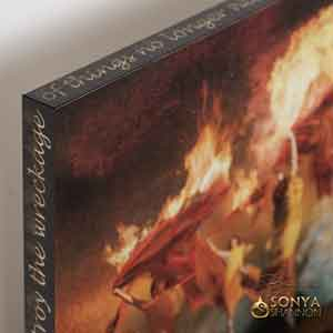 Sonya Shannon Burning Down the House Canvas Wrap