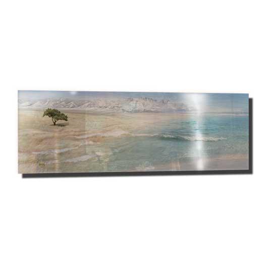 Prairie Ocean Infused Aluminum by Sonya Shannon